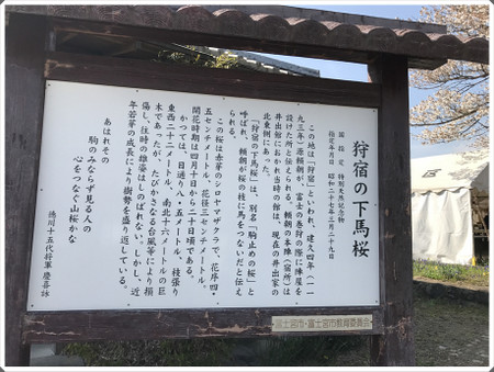 Img_2017_2